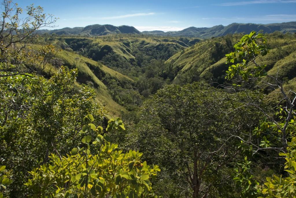 Reserva Natural Serra do Tombador, Cavalcante, Goias, Brasil, foto de Ze Paiva, Vista Imagens.
